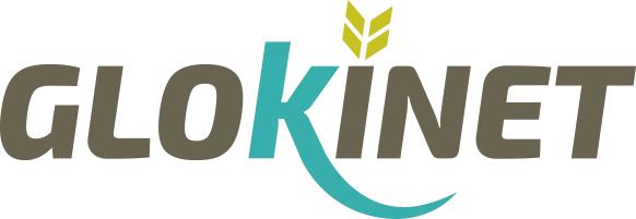 Glokinet Logo